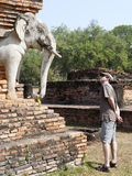 Regarder fixement les éléphants dans Sukothai Photos libres de droits