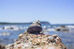 Regarder l'immensité de la mer Photographie stock libre de droits