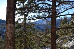 Regarder par des arbres la beauté de la montagne photographie stock