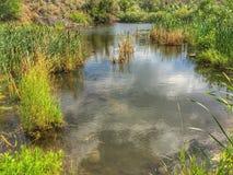 Regarder un bel étang extérieur Photographie stock libre de droits