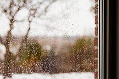 Regarder une forêt par la pluie chute sur un carreau de fenêtre images libres de droits