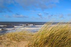 Regardez à la plage. Photographie stock libre de droits