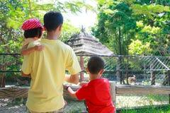 Regardez animal le zoo Photo libre de droits