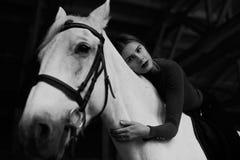 Regardez de dessous la femme tendre se trouvant sur le cheval blanc Images libres de droits