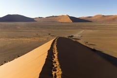 Regardez de la dune 45 dans le désert de Namib, Sossusvlei, Namibie Image libre de droits