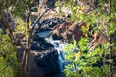 Regardez entre les arbres chez Edith Falls, Katherine, Australie Images stock