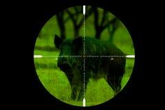 Regardez la cuvette un riflescope photographie stock