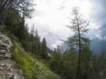 Regardez le fron un dessus de la montagne sur un beau paysage des moutains de dolomites et d'une forêt conifére de gree dans l'av image stock