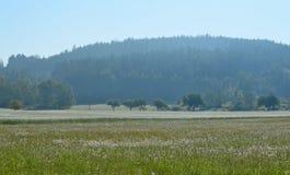 Regardez le paysage de ressort, Bohême du sud, République Tchèque Images stock