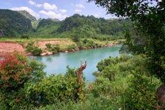Regardez par des buissons d'und d'arbres à une rivière colorée par turquoise près de la ville de Phong Nha en parc national de Ph Image libre de droits