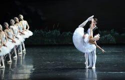 Regardez son image dans le miroir et plaignez-vous -Le lac swan de Lakeside-ballet de cygne Photographie stock