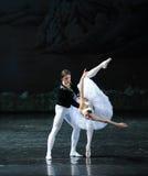 Regardez son ombre et déplorez son sort - le lac swan de Lakeside-ballet de cygne Photo libre de droits