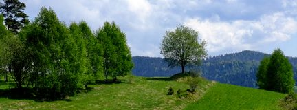 Regardez sur des prés de collines et des arbres simples près du wka de ³ de Chabà en Pologne photographie stock libre de droits