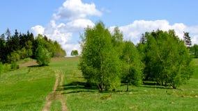Regardez sur les prés de collines, la route de village et les arbres simples près du wka de ³ de Chabà en Pologne photographie stock libre de droits