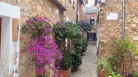 Regardez une vieille rue étroite du village avec le beau flowe photos libres de droits