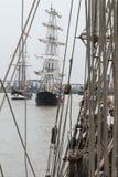 Regata alta Londra 2014 delle navi Fotografia Stock Libera da Diritti