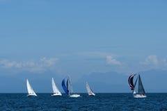 Regata da navigação fora da Costa do Pacífico Foto de Stock Royalty Free