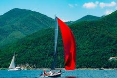 Regata de la navegación en Montenegro Regata en los yates en la bahía de Boka Fotografía de archivo