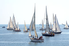 Regata degli yacht di navigazione Immagine Stock Libera da Diritti