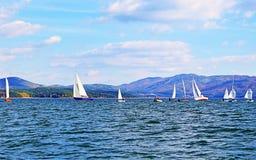 Regata dos barcos de navigação Imagem de Stock Royalty Free