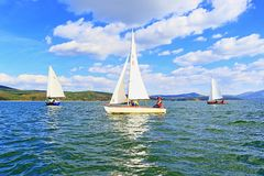 Regata dos veleiros Imagem de Stock Royalty Free