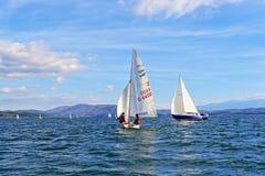 Regata dos veleiros Fotos de Stock Royalty Free