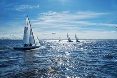 Regatta ναυσιπλοΐας στη Ρωσία Στοκ φωτογραφίες με δικαίωμα ελεύθερης χρήσης