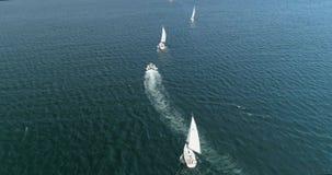 Regatta στη θάλασσα απόθεμα βίντεο