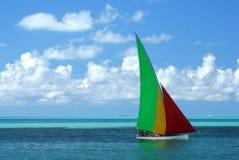 regatta arkivfoton