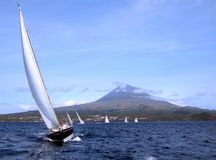 Regatta. In Azores Royalty Free Stock Photo