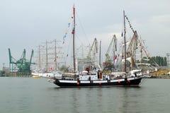 regatta 2010 dziejowych morzy wysyłają wysokiego Obraz Royalty Free