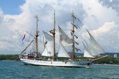 regatta 2010 dziejowych morzy wysyłają wysokiego fotografia stock