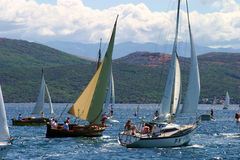 Regatta. With numerous sailships Stock Photography