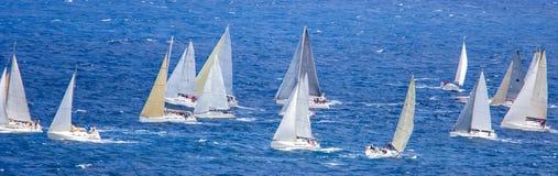regatta Stockbild