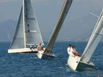 Regatta Stockfoto