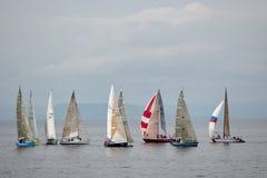 regatta Immagine Stock Libera da Diritti