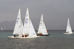 Regatta Royalty Free Stock Images