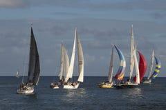 regatta Lizenzfreie Stockfotos