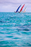regatta image stock