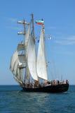 Regatta alto 2010 de la nave de los mares históricos Fotografía de archivo libre de regalías