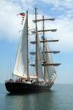 Regatta alto 2010 de la nave de los mares históricos Imágenes de archivo libres de regalías