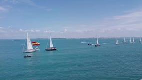 Regatta in the bay of Cadiz. stock video