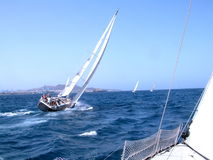During a regatta in Canaries Stock Image