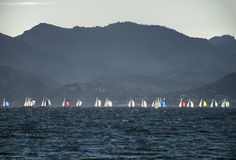Regatta in Cannes Royalty Free Stock Photos