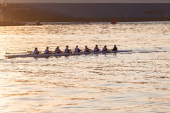 Regatta Canoe Rowing Eights Crew  Stock Photo