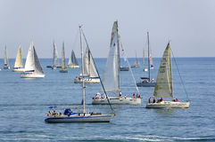 Regatta of Conero Royalty Free Stock Photography