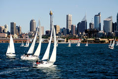Regatta de yacht image libre de droits