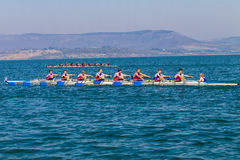 Regatta Eights Oct Rowing Competition  Stock Photography