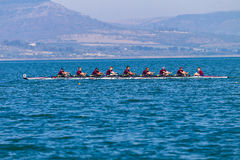 Regatta Eights Oct Rowing Racing Royalty Free Stock Images