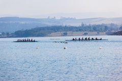 Regatta Eights Octs Rowing Teams Start Stock Images